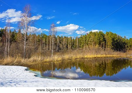 Spring landscape on a small lake