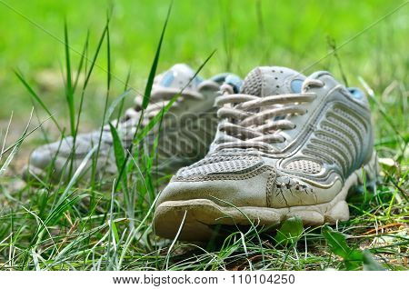 The Shabby Of Sports Shoes In The Young Grass