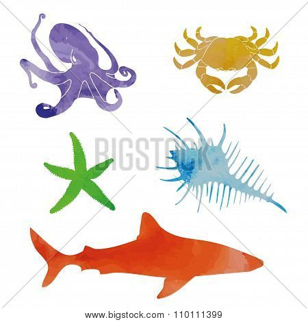 Vintage watercolor elements set in sea theme. Vector crab, shark, sea shell, shark and other stuff.