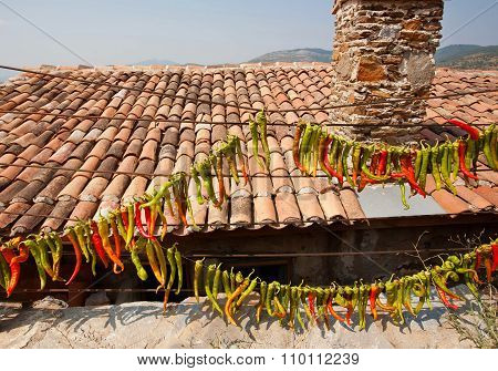 Village House With Tile Roof Pile And Red Chilly Peppers Hanging On The Wall. Typical House Of Rural