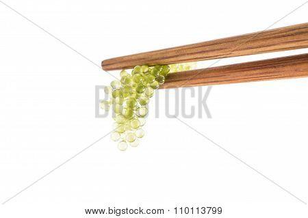 Seaweed Healthy Food Oval sea grapes seaweed isolated