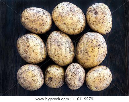 Ten Fresh Potatoes In Rows