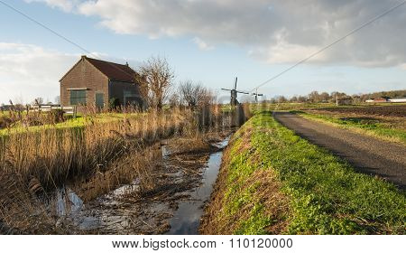 Typical Dutch Polder Landscape In Autumn