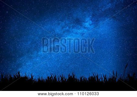 Blue Night Sky With Stars Above Field Of Grass