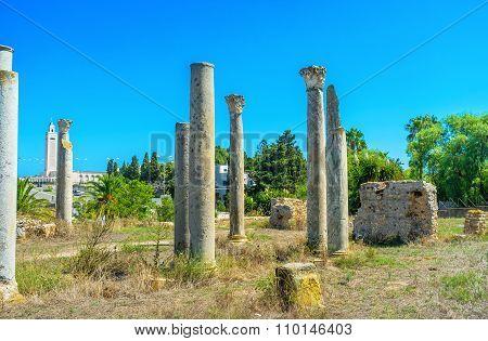 The Grey Columns