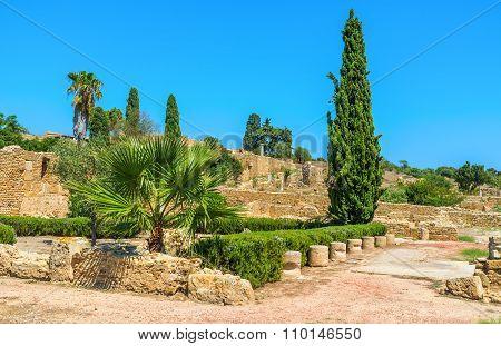 The Site Of Roman Villas