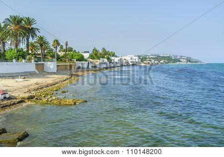 The Beach Of Carthage