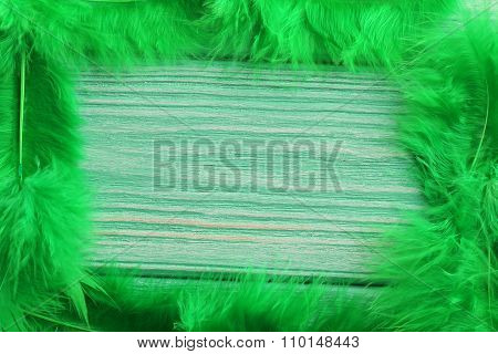 Feather On A Mint Wooden Table