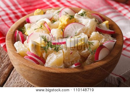Potato Salad With Radish And Mayonnaise Close-up. Horizontal