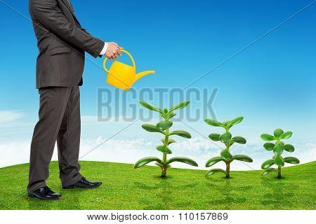 Businessman watering plants