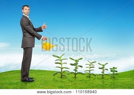Businessman watering plants and showing ok