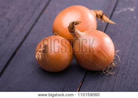 Beautiful Yellow Sweet Onions