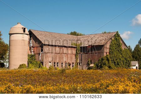 Weathered Autumn Barn