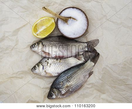 A  fresh carp live fish lying on a on paper background with a knife and slices of lemon and with salt dill. Live fish crucian Carassius auratus gibelio.