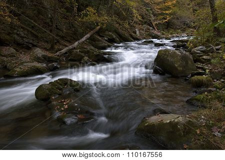 Natahala Flowing in Autumn