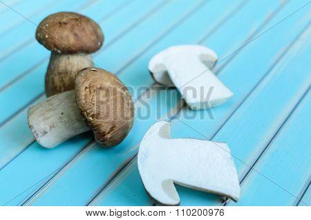 Fresh porcini mushrooms lying on wooden turquoise table
