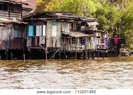 Big Thai Slum
