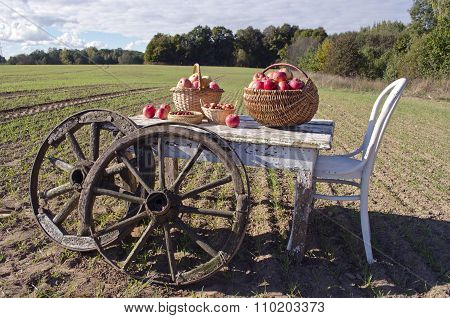 Table With Chair, Apples And Wooden Wheels In Field