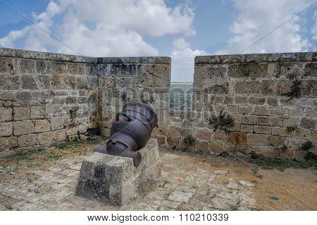 Bonaparte's Cannon