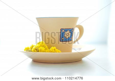 Cup Of Tea On A Saucer With Dried Medicinal Flowers Helichrysum