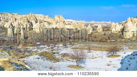 The Unusual Shaped Rocks