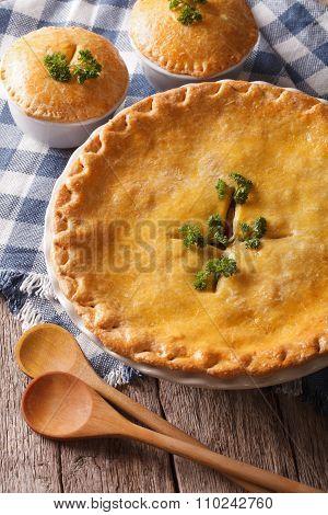 Golden Chicken Pot Pie In The Baking Dish Close Up. Vertical