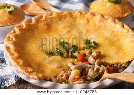 Big Chicken Pot Pie Macro In Baking Dish. Horizontal