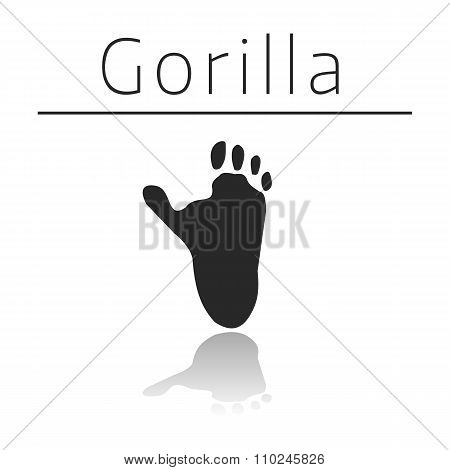 Gorilla animal track