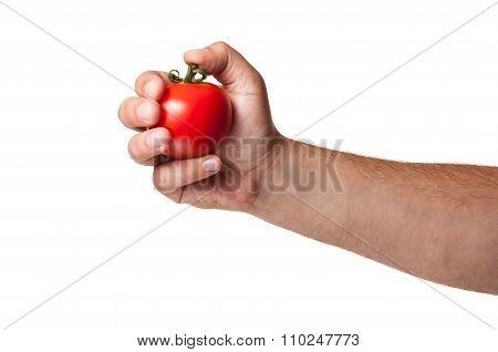 Tomato Bomb.