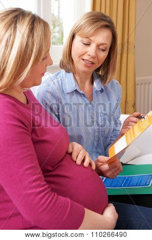 Midwife Discussing Literature With Pregnant Woman On Home Visit