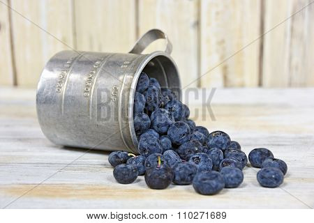 blueberries in tin measuring cup