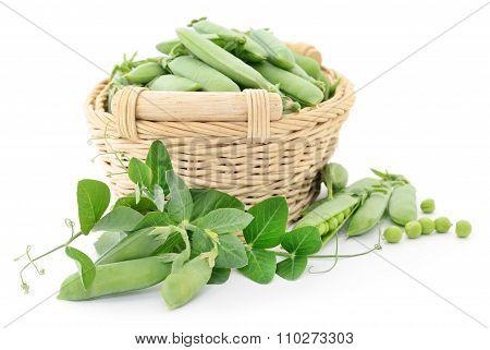 Green Peas In Basket.
