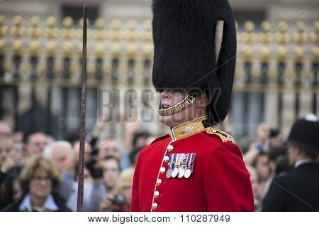 Royal Guardsman, London