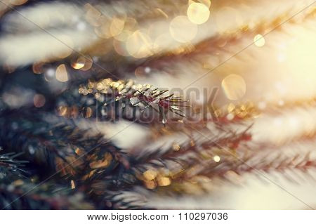 Background With The Sparkling Small Pieces Of Ice On Fir-tree Branches.