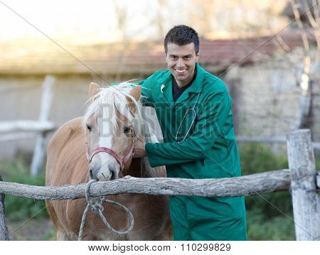 Veterinarian With Horse