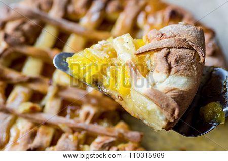 Scapula With A Slice Of Citrus Pie