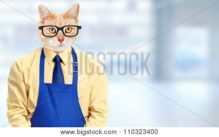 Ginger cat worker over blue abstract background.