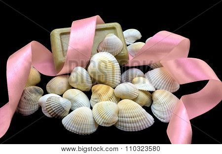 Variety Of Sea And River White Shell, Natural Soap, Tender Rose Ribbon Macro Isolated On Black