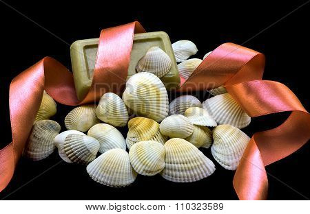 Variety Of Sea And River White Shell, Natural Soap, Orange Ribbon Macro Isolated On Black