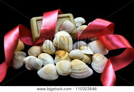 Variety Of Sea And River White Shells, Natural Soap, Red Ribbon Macro Isolated On Black