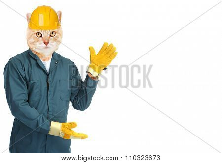 Ginger cat worker isolated on white background.