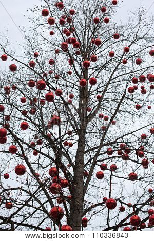 Tree with big red Christmas baubles