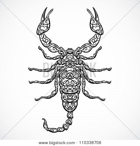 Ornate Scorpio. Vintage black and white Zodiac sign. Vector hand drawn vector illustration