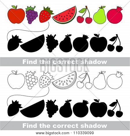 Fruit collection. Find correct shadow.