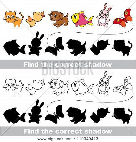 Pets collection. Find correct shadow.