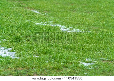 Green Grass With Snow Patches