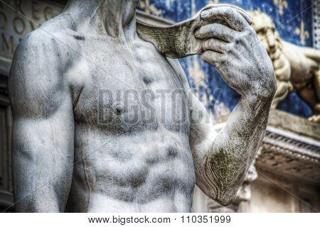 World Famous Michelangelo's David Chest