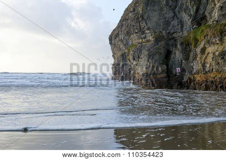 Birds Waves And Cliffs
