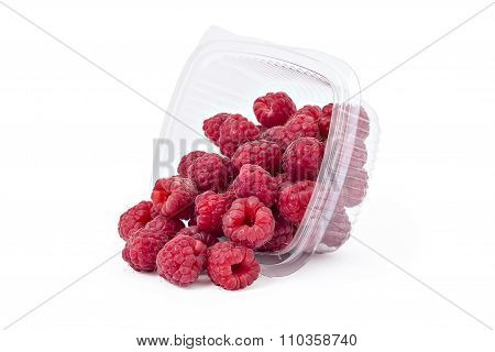 Fresh ripe organic raspberries