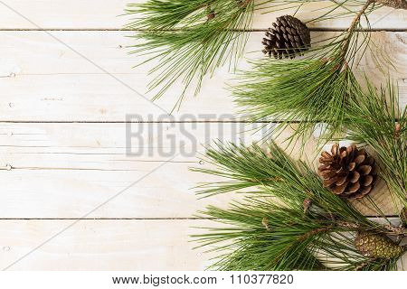 Branches of pinetree on wooden background